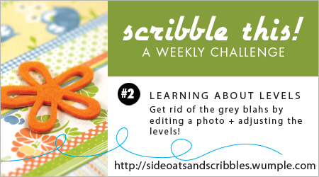 Scribble-this-week2-levels