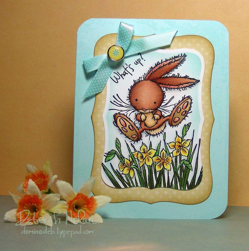Daffodil-Bunny-04-26-10