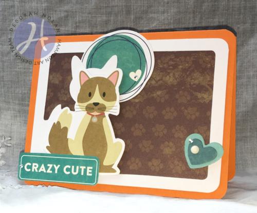 2017-03-01-Crazy-Cute